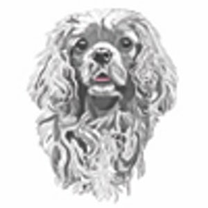 doggy.graphics